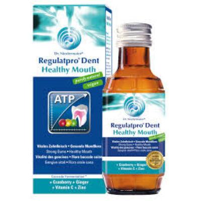 Dr. Niedermaier Pharma Regulatpro Dent – Healthy Mouth 350 ml